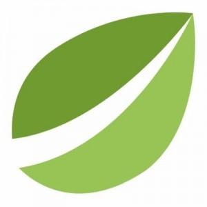 Bitfinex-Logo-300×300